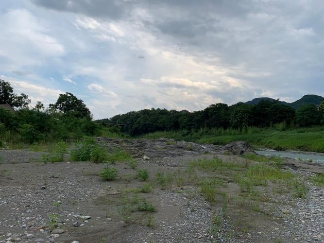 テントサイトから降りて散歩できる荒川。川の流れが早いので入るのは難しそうだった