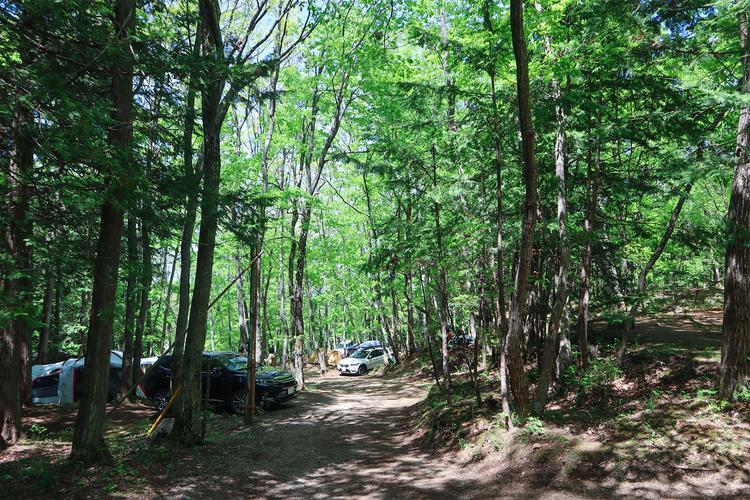林間サイトプラン