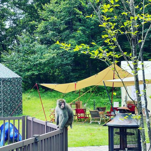 手ぶらDEキャンプ≪那須ハイランドパークの入園無料特典付き≫1泊2食付【ACなし】【車両不可】